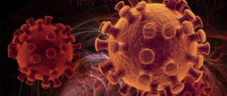 вирус папилломы 52